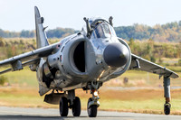 Art Nalls brings the Sea Harrier in front of the crowd after their final performance of the season.