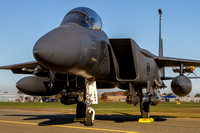 "On static display at the Patuxent River Air Expo, an F-15E Strike Eagle assigned to the 333rd Fighter Squadron ""Lancers."""