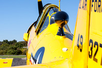 Yellow T-6 Texan and an ice blue sky.