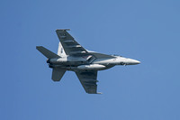 F-18F Super Hornet, sometimes referred to as the Rhino.